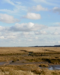 Thornham creek & marshes © Mari French 2011