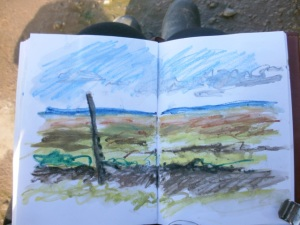 Thornham saltmarsh, from sketchbook © Mari French 2011