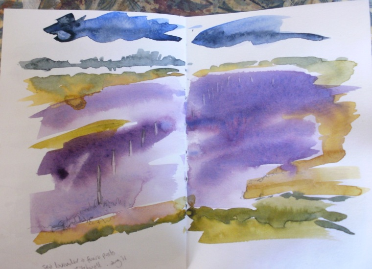 Sea Lavender, Norfolk (sketch) © Mari French 2011