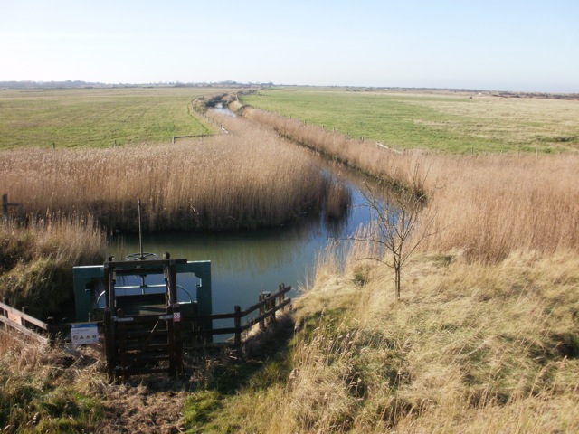 Thornham Marsh (digital photo) © Mari French 2012