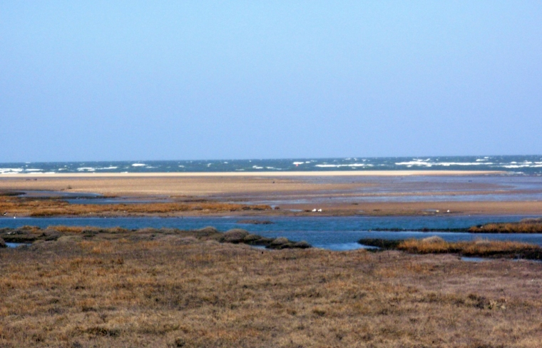 Thornham marsh & coast, copyright Mari French 2013