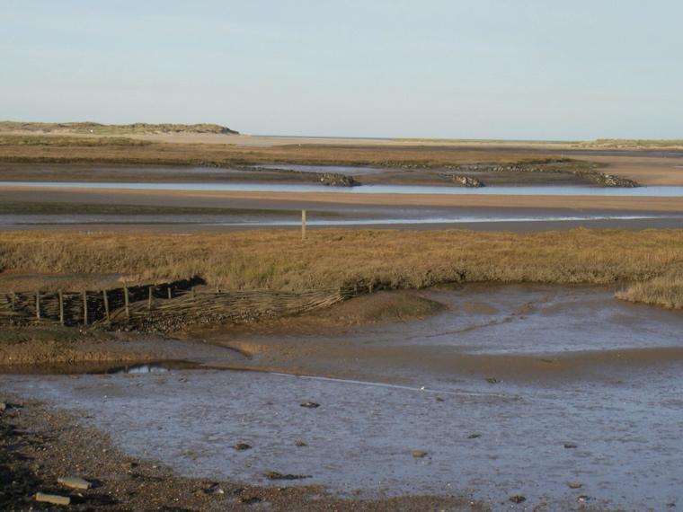 Woven bank supports, Burnham Overy marsh. Mari French 2014