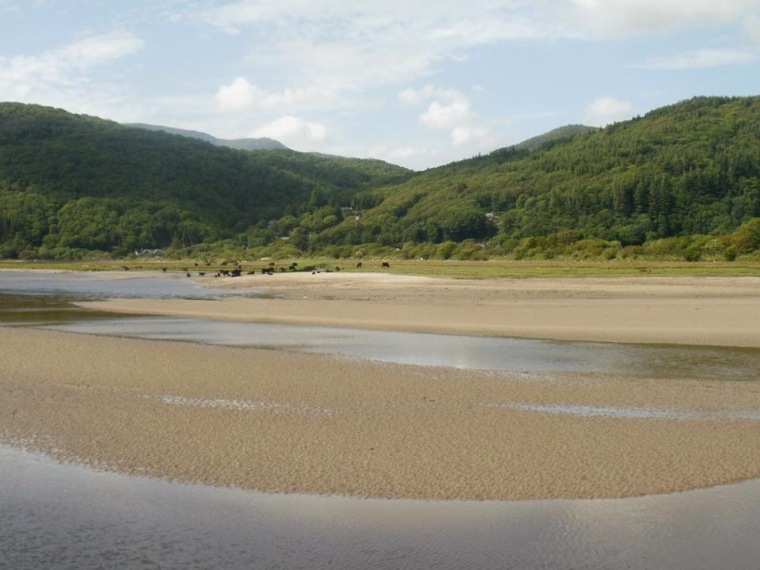 Mawddach estuary. Mari French 2015