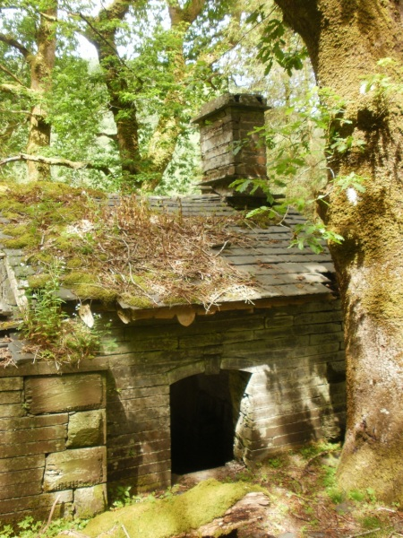 Slate mine village ruins, above Corris. Mari French 2015