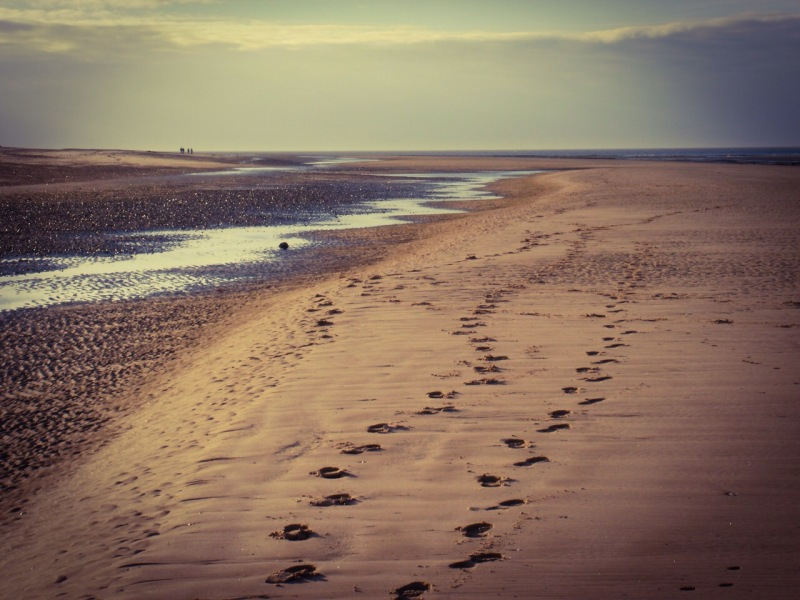 Holme Beach, footprints. Mari French 2015