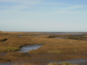 Saltmarsh, Thornham, November. Mari French 2015