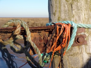 Rope and seaweed, staithes, Thornham. © Mari French 2016