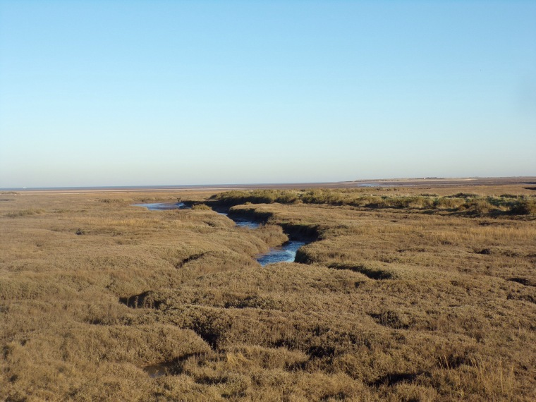 Creek, Thornham saltmarsh.
