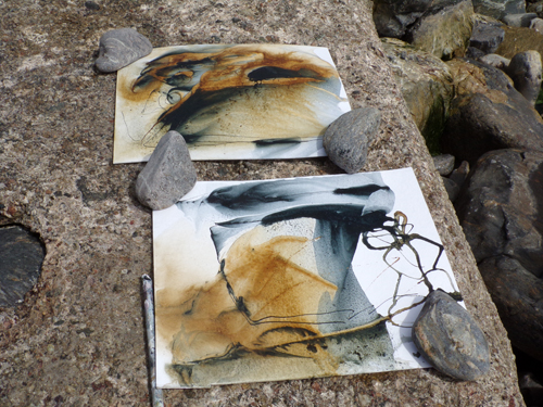Experimental ink studies, Priest Cove. © Mari French 2017.