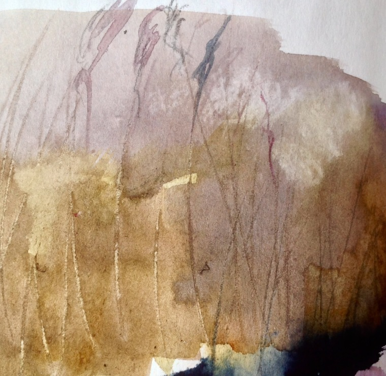 Reedbed sketch (detail) 7 © Mari French 2017