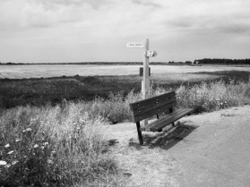 Favourit bench, Thornham salt marsh, North Norfolk. © Mari French 2018