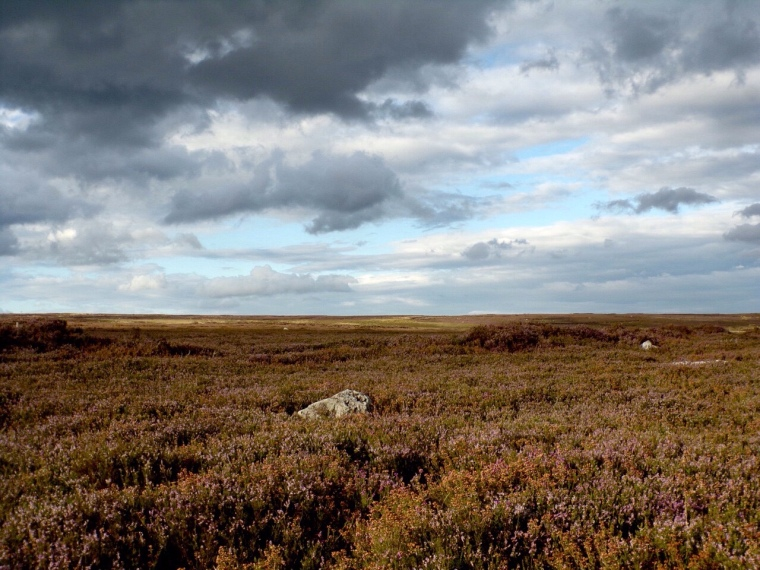 High moorland near Rosedale
