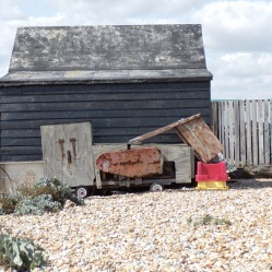 Dungeness fishing shed © Mari French 2019